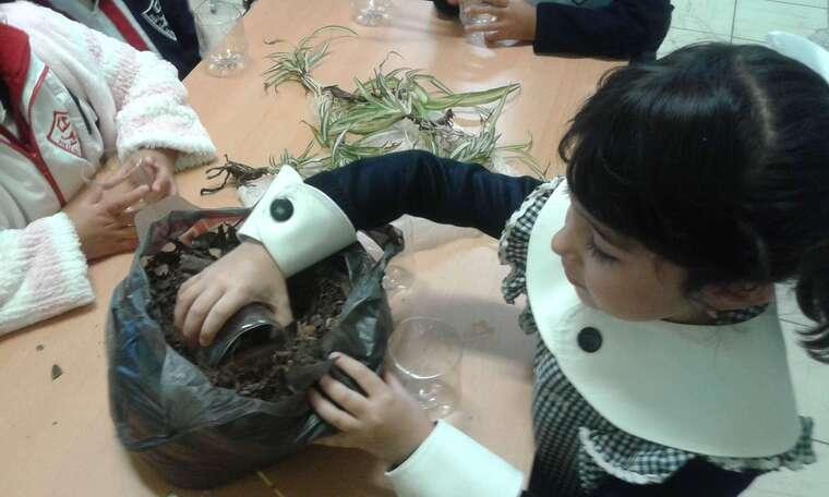 Kinder Colegio Central Propiciamos en nuestros alumnos el cuidado y el amor a la naturalez